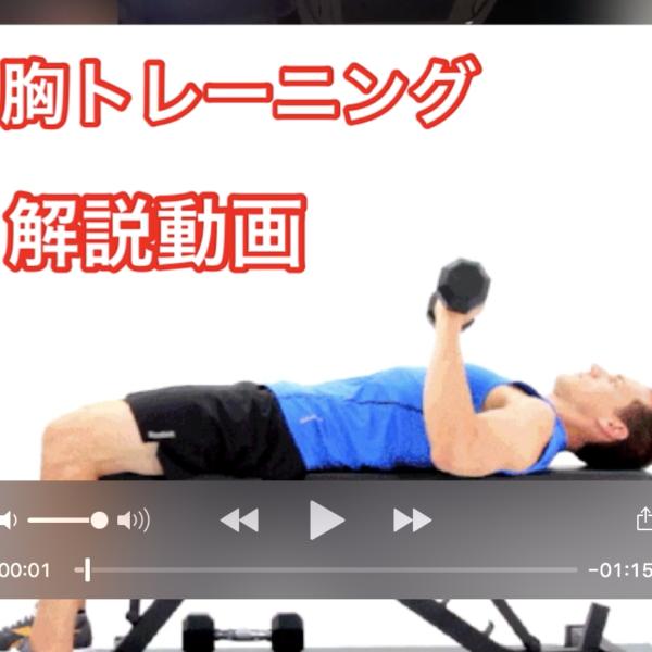 天満橋フィットネスジムの脂肪をつけず筋肉を発達させる運動方法!解説動画